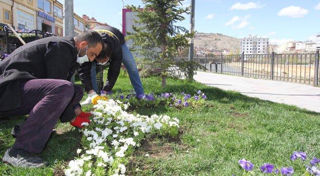 Park ve Bahçelere 50 Bin Çiçek Dikildi
