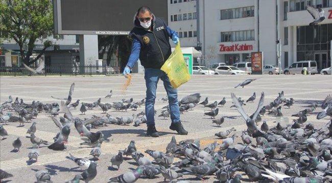 Samsun'da Aç Kalan Kuşlara Polisler Yem Verdi