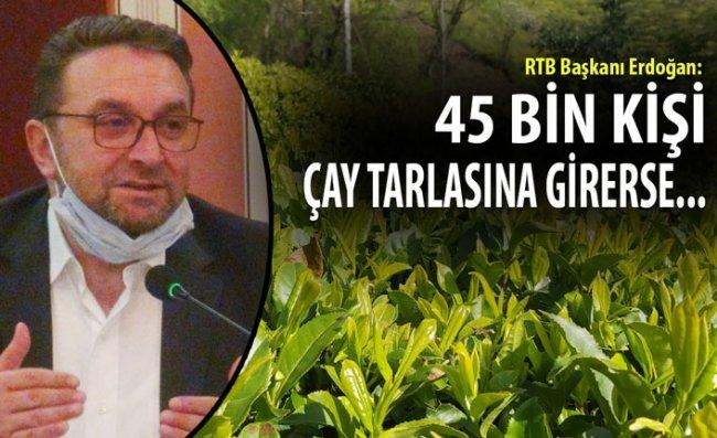 RTB Başkanı Erdoğan'dan Çay Hasadı İçin Çözüm Önerisi